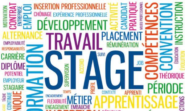Stage marketing et communication à Sen'Drive Solutions